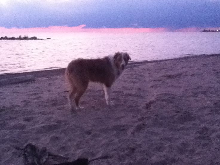 At the beach watching the sunset