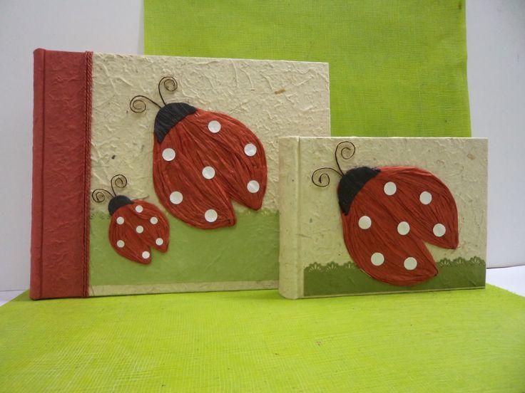 Album 24 x 30 e 15 x 20 in carta gelso più colori e coccinelle in carta velina.