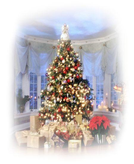 Gyönyörű Tálapós png kép,Gyönyörű karácsonyfák - png kép,Gyönyörű karácsonyfa - png kép,Gyönyörű havas karácsonyfa - png kép,Gyönyörű png karácsonyfa,Gyönyörű png karácsonyfa,Arany színű karácsonyfa - png,Szép png fenyőfa,Madárka Mikulás-sapkában - png,Gyönyörű karácsonyi png dísz, - jpiros Blogja - Állatok,Angyalok, tündérek,Animációk, gifek,Anyák napjára képek,Donald Zolán festményei,Egészség,Érdekességek,Ezotéria,Feliratos: estét, éjszakát,Feliratos: hetet, hétvégét ,Feliratos: reggelt…