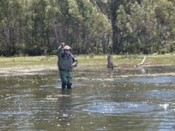 Fly Fishing in Tasmania, Australia