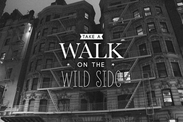 take a walk on the wild side by jules via behance tattoo pinterest trips behance and the. Black Bedroom Furniture Sets. Home Design Ideas