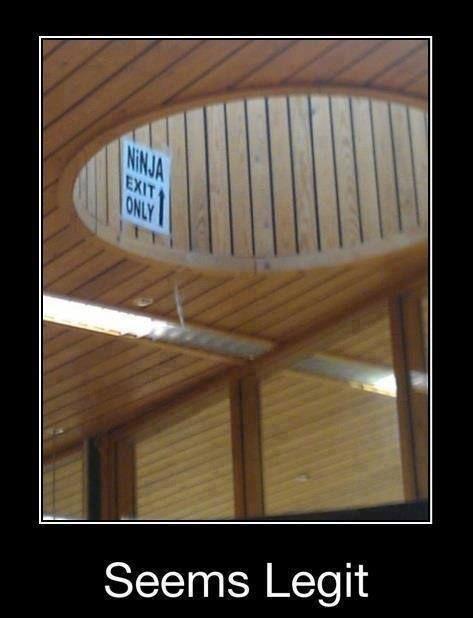Ninja Exam Can you pass it?!