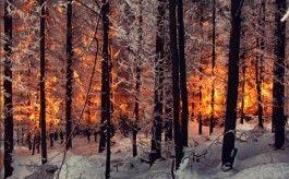 Najlepší svetoví fotografi na instagrame: Zimný špeciál #2
