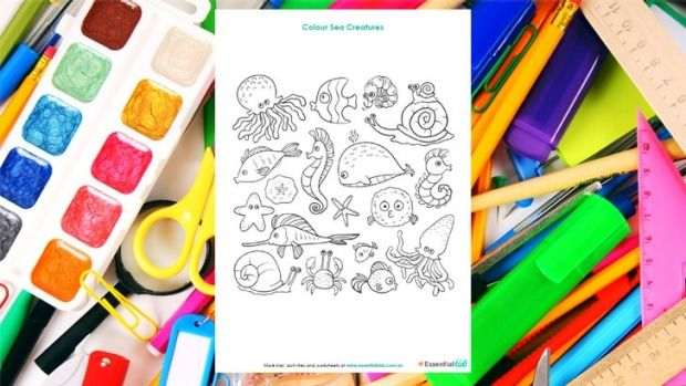 Sea creatures colouring page http://www.essentialkids.com.au/activities/colouring-pages/sea-creatures-colouring-page-20151016-gkb0ck