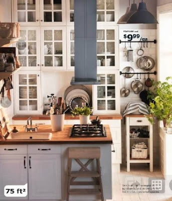 ikea ideas country shabby chic...love those glass front cabinets to the fricken ceiling!!!!