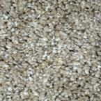 Carpet Sample - Graceful Style II - Color Wilmore Texture 8 in. x 8 in.