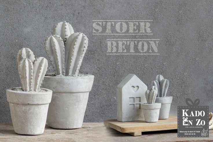 Cactus van beton, natuurlijk Kado en Zo Balk
