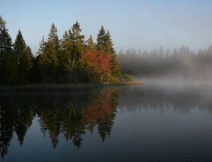 Une image de Balades d'automne
