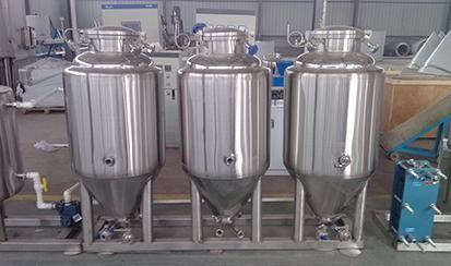 100L Double layers fermenter