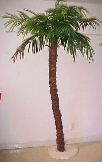 Artificial palm tree rental | Mari | Palm trees, Small palm