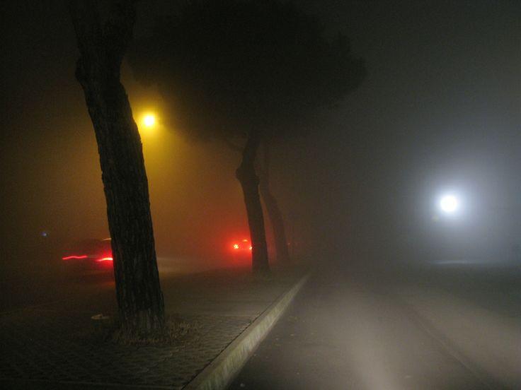 #fog #night #street #city #lights