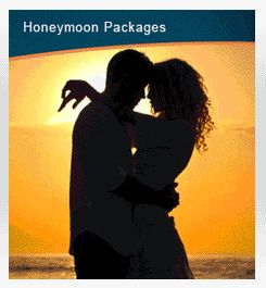 Honeymoon, Winter, Summer, Monsoon Packages