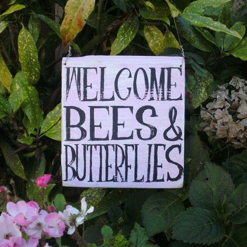 Welcome Bees and Butterflies £15.00