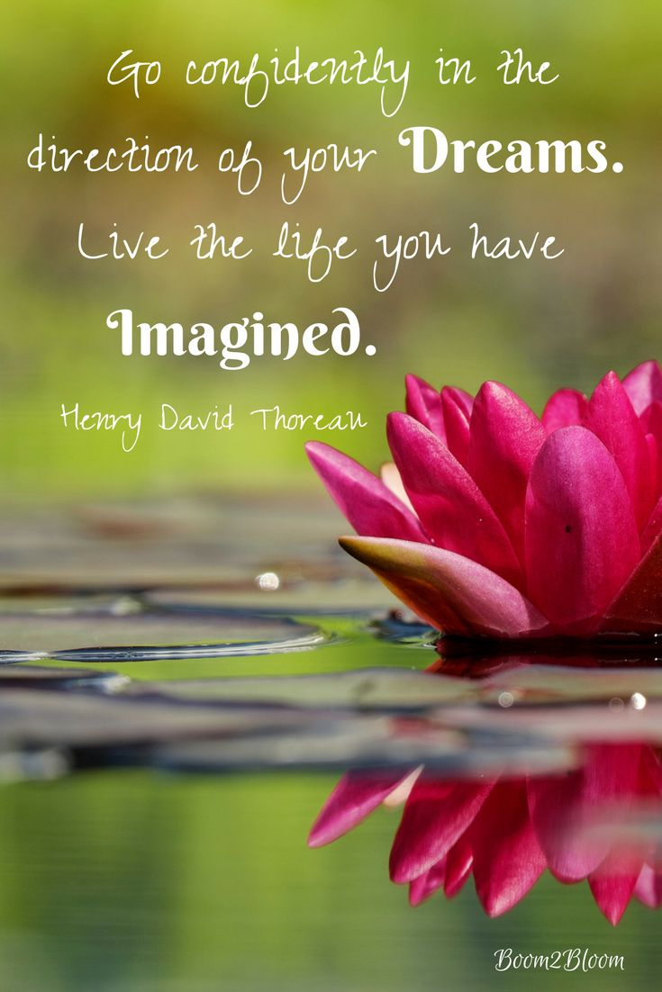 Go confidently in the direction of your dreams. Live the life you have imagined. Quote by Henry David Thoreau.