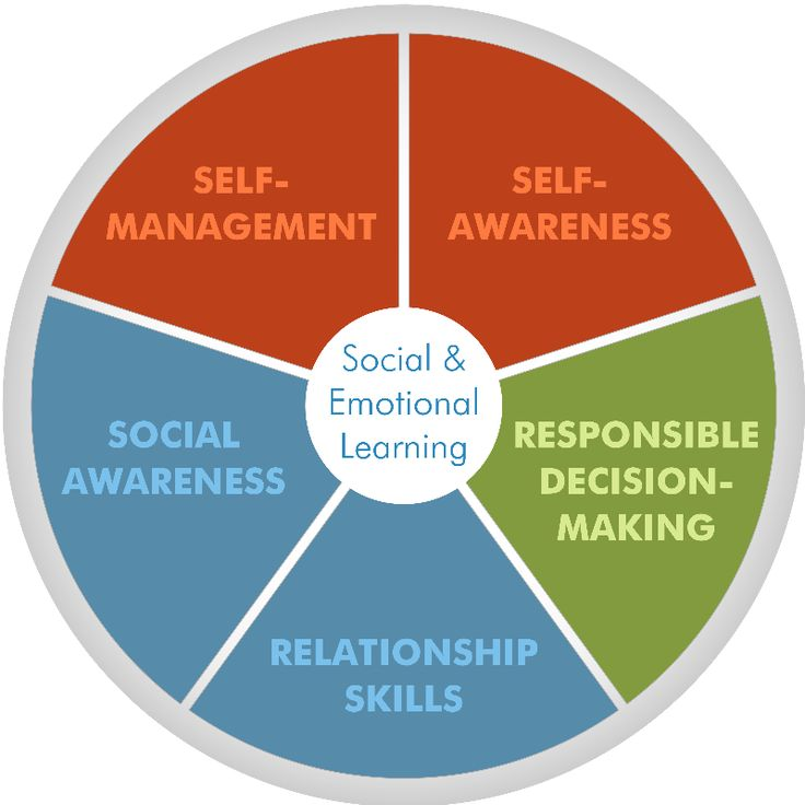 Social and Emotional Learning Core Competencies CASEL has identified five interrelated sets of cognitive, affective and behavioral competencies