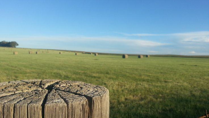 Freestate Road fields