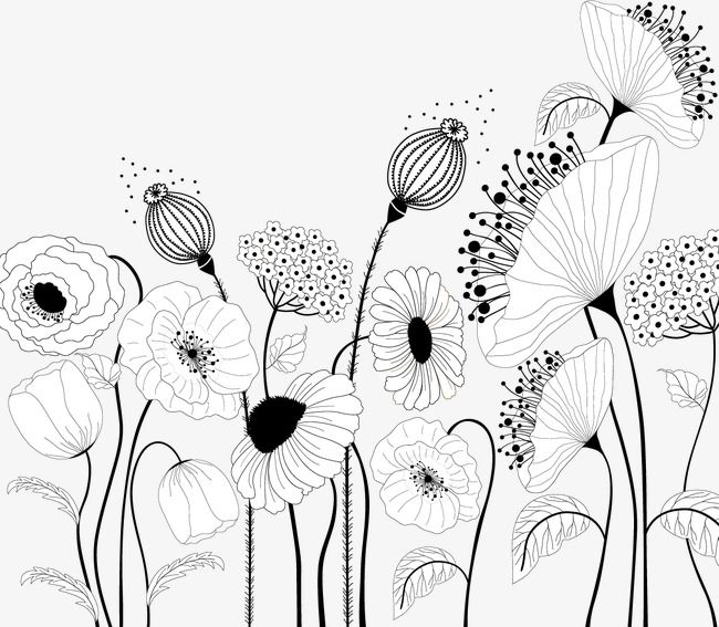 Flowers Vector Material Decorative Paintings Cartoon Plants Flowers Png And Vector With Transparent Background For Free Download Flower Drawing Decorative Painting Art