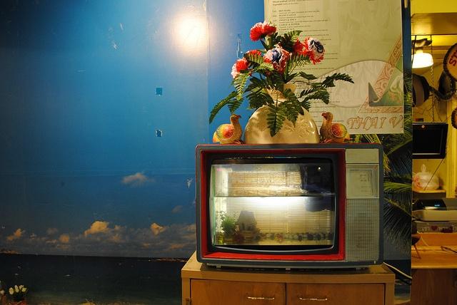 10 best images about old tv fish tank aquariums on pinterest for Antique thai cuisine san diego