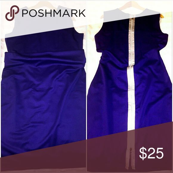 Purple Full Figure Dress w/ Silver Accents Large Form Fitting Purple Dress w/ Silver Accents Large Dresses