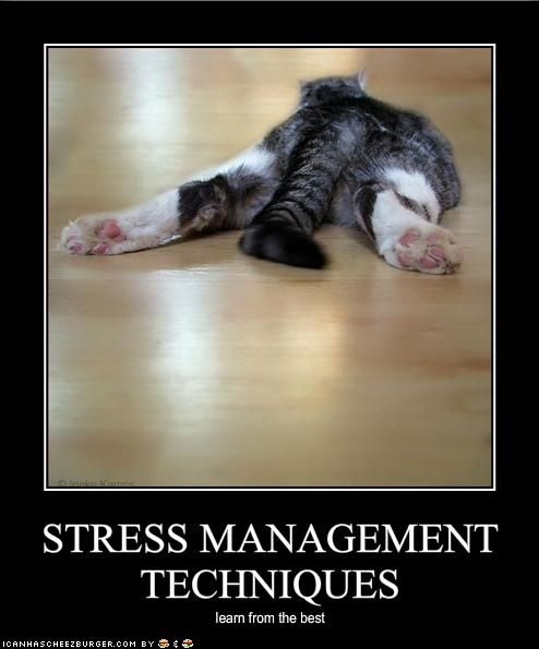 Monday - 18-04-2016 - Don't Stress Out Over Stress ...