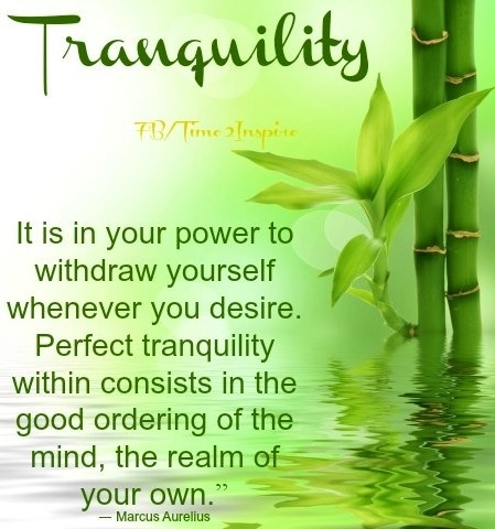 """Tranquility quote via """"Time 2 Inspire"""" at www.Facebook.com/Time222Inspire"""