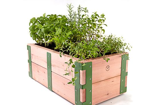 Raised garden kit: Keep it simple with an above-ground plant bed. Ideal for city folk. From $95, scoutregalia.com