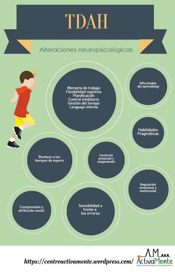 TADH: Los niños con este trastorno presentan dificultad de aprendizaje, sensibilidad frente a errores y rechazo a los tiempos de espera. Sigue estos siete consejos para ayudar controlar el Déficit de atención en los niños http://tugimnasiacerebral.com/gimnasia-cerebral-para-ni%C3%B1os/ejercicios-trastorno-por-deficit-de-atencion-en-ni%C3%B1os-con-sin-hiperactividad-tratamiento-tda-tdah #Infografia #TADH #Gimnasia #Cerebral #Control #Ejercicios