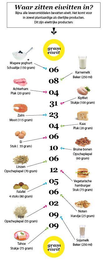 Een dieet met veel eiwitten helpt bij het afslanken. Maar eiwitten zijn sowieso onmisbare bestanddelen van een goede voeding. Maar waar zitten ze eigenlijk in? En in welke hoeveelheden? Een overzicht van eiwitrijke voeding die past binnen een gezond dieet.