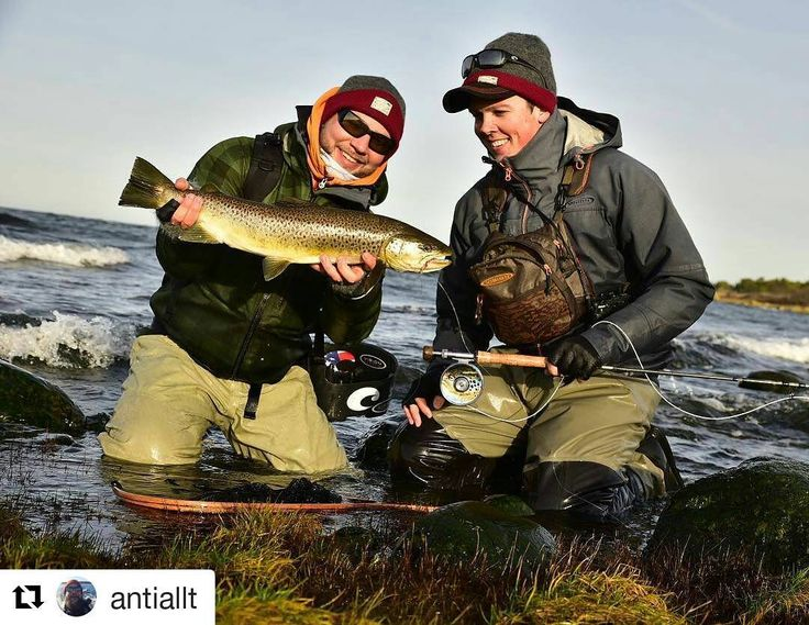 41 best images about fly fishing gotland on pinterest for Is it a good day to fish