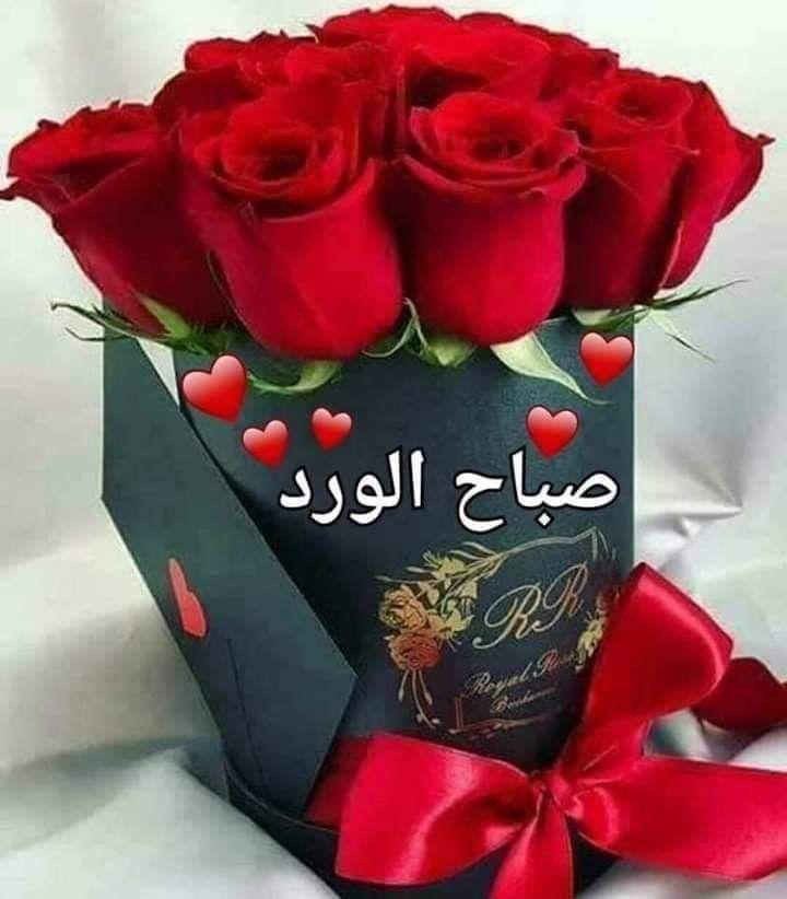 صباح الخير لـ أصحاب القلوب النقية ل ـ ع شاق السلام الداخلي للـ مبتسمين وم حبي الخير للآخري Birthday Flowers Bouquet Birthday Flowers Good Morning Flowers