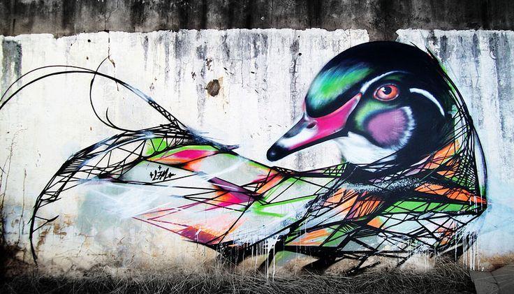 Mesmerizing Graffiti Birds on the Streets of Brazil by L7m