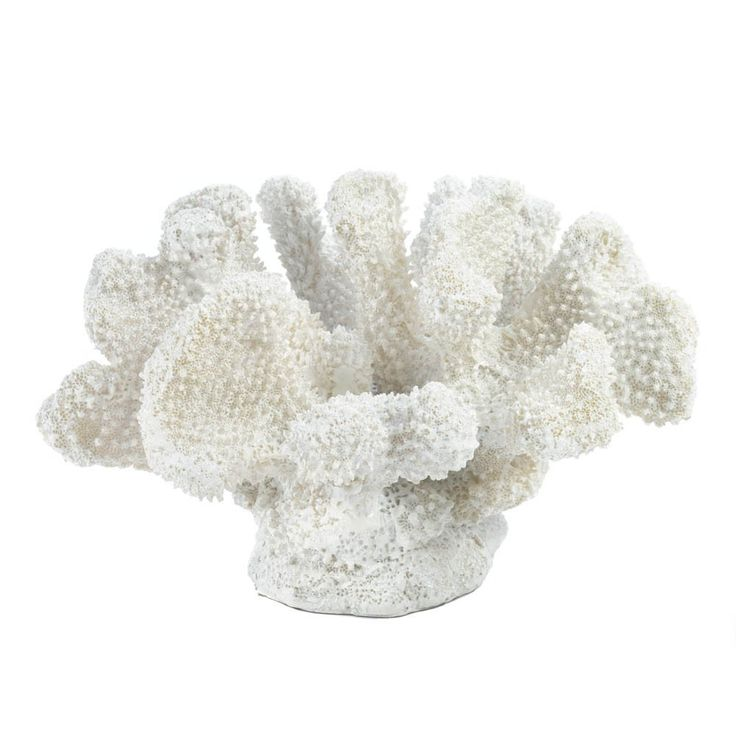 This product only ships to the US and Canada. A little bit of oceanfront style goes a long way when it comes to room accents. This pretty coral-like statue features fantastic texture and a fresh white