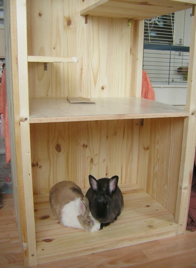 les 25 meilleures id es de la cat gorie cage de chinchilla. Black Bedroom Furniture Sets. Home Design Ideas