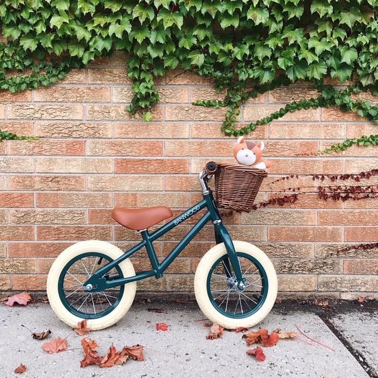 NEW - We are delighted to introduce @banwoodbikes from Germany. These adorable balance bikes are suitable for age 2.5 - 5 yrs .Teach your kids the basics of cycling with these balance bikes, helping your little one to develop their balance, steering and coordination. Available in six colours and come with their very own basket .  Available from @joshjennakids