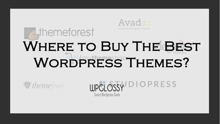Recommeded Marketplaces To Buy Best WordPress Themes