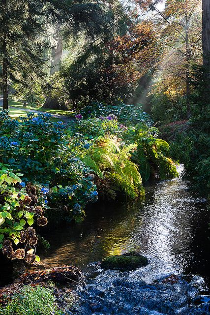 Bodnant Gardens - The Dell,Convy,Wales http://www.vacationrentalpeople.com/vacation-rentals.aspx/World/Europe/UK/Wales
