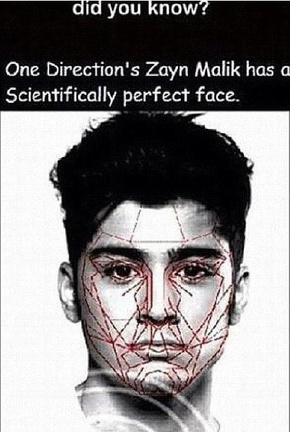 Apparently Zayn Malik has a scientifically perfect face personally I think he is just perfect in general like if you agree!