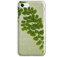 iPhone Case/Skin. #fern #maidenhairfern #sandrafoster