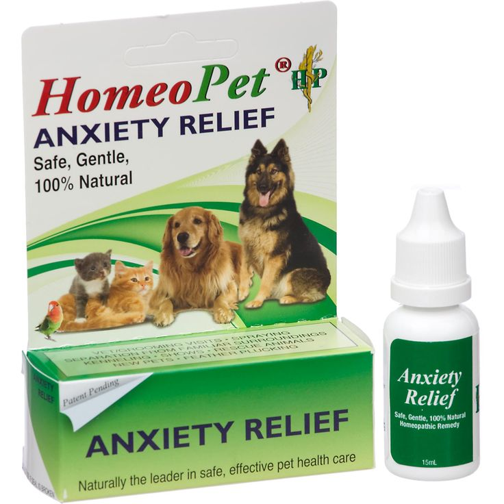Home Remedies To Sedate A Dog