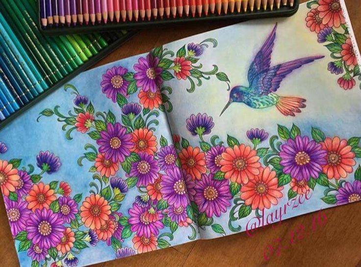 Adult Coloring Colouring Books Hummingbirds Chris Garver Color Art In Vintage Hummingbird