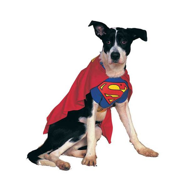 Superman Dog Halloween Costume Pet Costumes For Dogs Pet