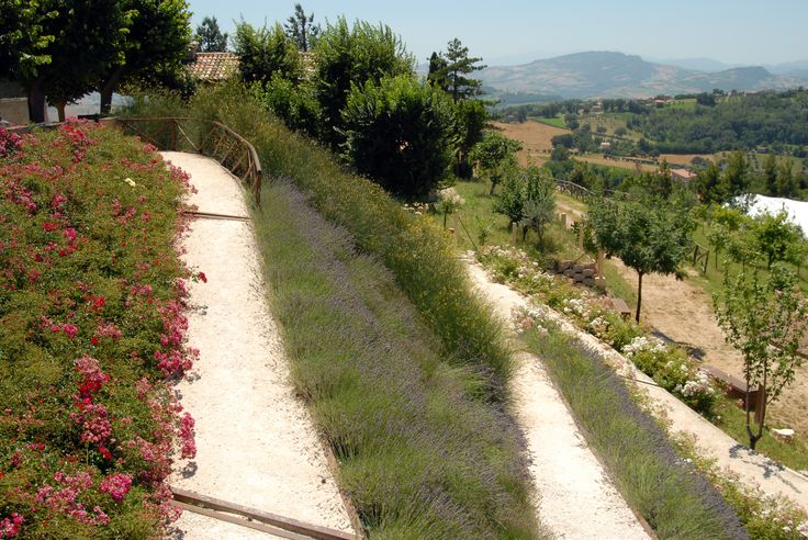 Giardino soprannominato parco pittorico #marcafermana #montevidoncorrado #fermo #marche