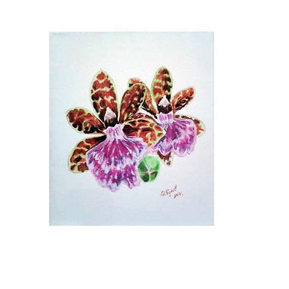 Original exotic tropical flower painting Zygopetalum by Pilipart, $52.00