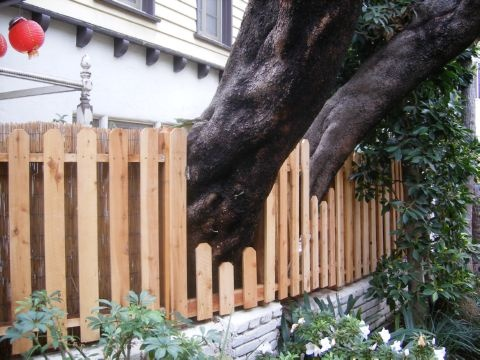 fence around tree - Google Search
