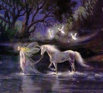 *FAIRY & UNICORN: