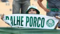 Porco - Torcida Palmeiras