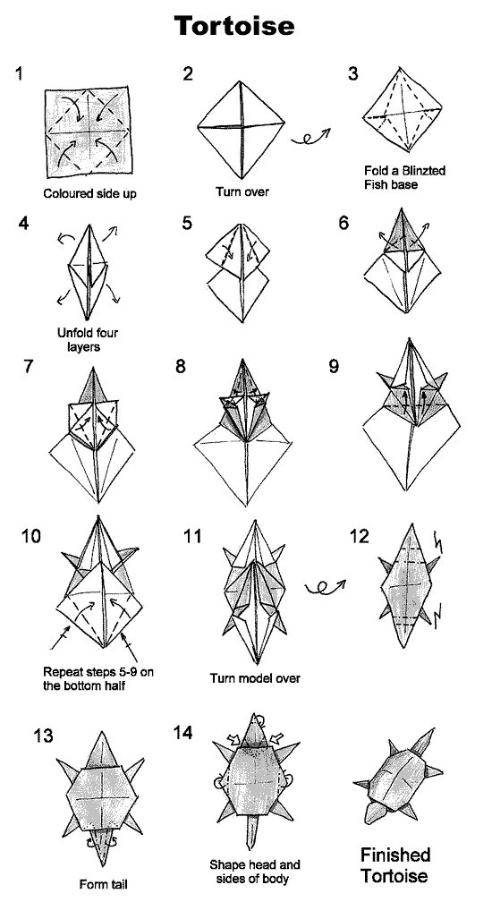 1000 images about dino origami on pinterest money origami tortoise and snakes - Origami grenouille sauteuse pdf ...