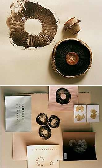 #diy printmaking ideas - lovely prints with mushrooms