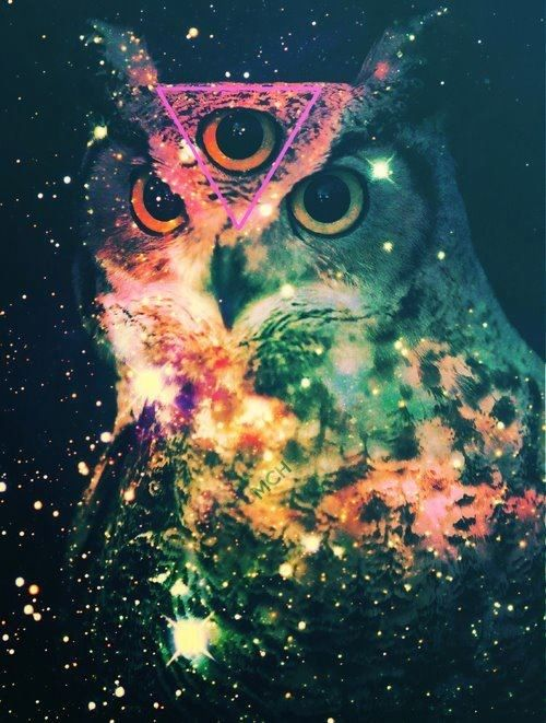 Psychedelic owl <3 via | Hippies Hope Shop www.hippieshope.com