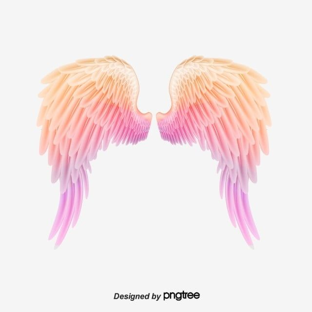 Seven Colors Lovely Angel Angel Wings Spreading Wings Color Pink Feather Wing Soaring Texture Flight Angel Clipart Wings C Wings Art Wings Drawing Wings Tattoo
